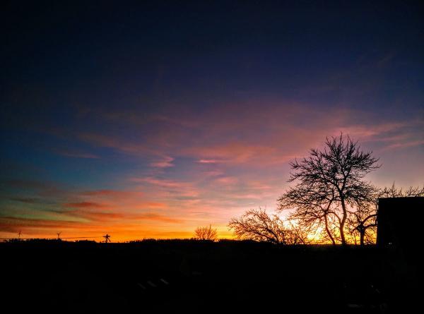 20190226_sunset.jpg