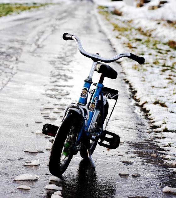 des_meisters_bike.jpg