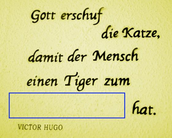 freitags_challenge_20111209.jpg