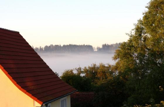 morning_mist_20160624.jpg