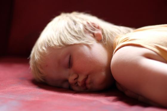 schlafender_drache.jpg