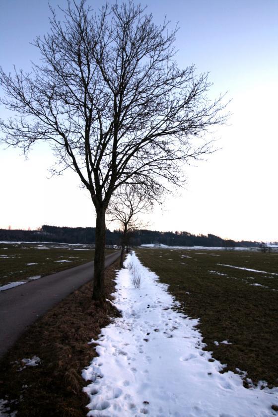 schneegraben.jpg