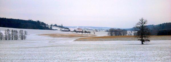 stegenhof-city_20120113.jpg